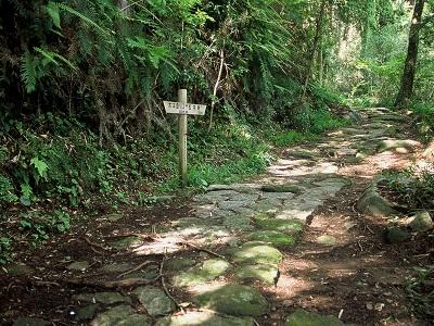 Meiji Period Stone Path
