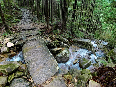 Stone Bridge and Stone Path
