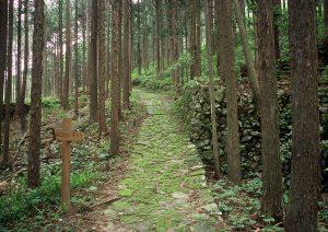 熊野古道 風伝峠(紀和町側登り口)