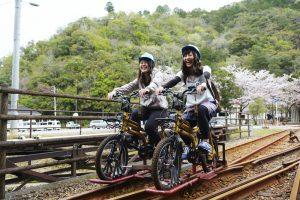 Rail Mountain Bike