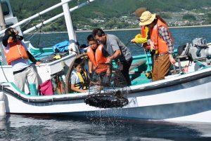 ケンケン漁とタコかご漁体験