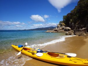 Sea Kayak and SUP