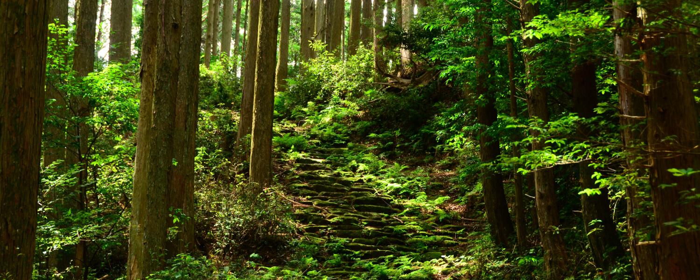 Nigishima-toge・Okamizaka-toge Pass